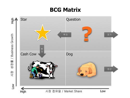 uso de la matriz bcg